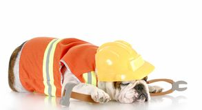 Sleeping on the job Stock Photo