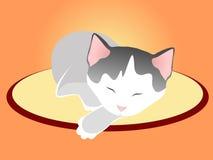 Sleeping kitten in silence Stock Image