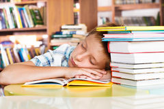 Sleeping in a library Royalty Free Stock Photography