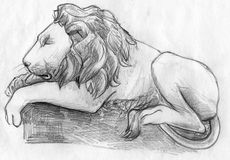 Sleeping lion sketch. Hand drawn pencil sketch of a lion sleeping in the zoo Royalty Free Stock Photos