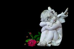 Sleeping angel isolated on black background Stock Photos