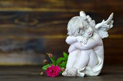 Sleeping angel and single rose on wooden background Royalty Free Stock Images