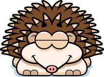 Sleeping Little Hedgehog Royalty Free Stock Photo