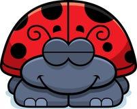Sleeping Little Ladybug Stock Photography
