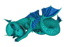Sleeping Little Sea Dragon Royalty Free Stock Images