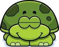 Sleeping Little Turtle Stock Photos