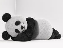 Sleeping, lying, real, down, serene, tired, bedtime. Furry panda lying on its side, and sleeps Stock Images