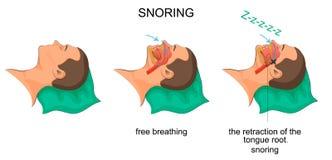 Sleeping man snores Stock Photo