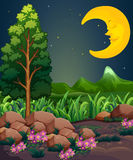 A sleeping moon. Illustration of a sleeping moon Stock Photography