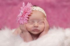 Sleeping newborn. Newborn baby girl sleeping in a adorable position. Bright pink background and flower in hair Stock Images