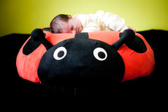 Sleeping baby. Cute baby sleeping on a ladybird Royalty Free Stock Photography