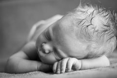 Sleeping newborn Stock Image