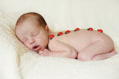 Sleeping newborn Stock Images