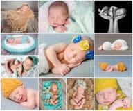 Sleeping newborn babies collage Royalty Free Stock Photos