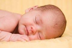 Sleeping newborn baby. Stock Photos