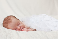 Newborn sleeping on the wings of angels. Sleeping newborn baby with angel wings on a light background royalty free stock photos
