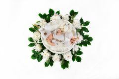 Sleeping newborn baby in a basket in a white dress, with white flowers peonies and green leaves, on a white background, place for stock photos
