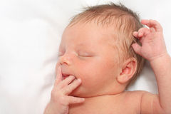 Sleeping Newborn Baby Boy Royalty Free Stock Images