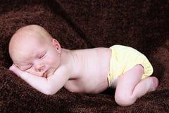 Sleeping newborn baby boy Stock Images