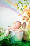 Sleeping newborn baby. Newborn baby boy sleeping in a silver metal bucket. Cartoon fairy house on background Stock Image