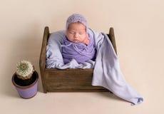 Free Sleeping Newborn Baby Girl Royalty Free Stock Photos - 120569038