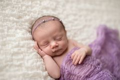Sleeping Newborn Baby Girl with Lavender Blanket Royalty Free Stock Images