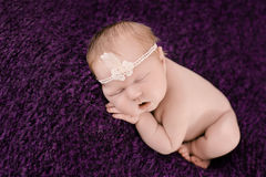 Sleeping newborn baby girl on the violet background Royalty Free Stock Photography