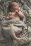 Sleeping newborn baby laying on the bed wrapped in the scarf Stock Image