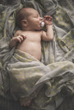 Sleeping newborn baby laying on the bed wrapped in the scarf Royalty Free Stock Images