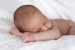 Sleeping newborn baby resting head on arms Royalty Free Stock Image