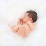 Sleeping newborn baby in white fur. Royalty Free Stock Image