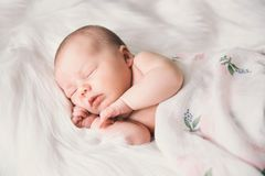 Sleeping newborn baby in a wrap on white blanket. Beautiful portrait of little child girl 7 days, one week old Stock Image