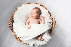 Sleeping newborn baby in a wrap on white blanket. Beautiful portrait of little child girl 10 days royalty free stock image