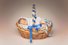 Sleeping newborn in basket Stock Image
