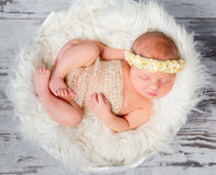 Sleeping newborn girl on round bed in funy pose Royalty Free Stock Photography