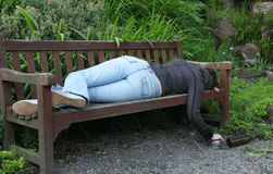 Sleeping it Off. A young woman in blue jeans and black jacket lying face down on a park banch holding a spirit bottle stock images