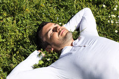 Sleeping On Green Grass Royalty Free Stock Images