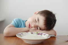Sleeping  over the plate of porridge Stock Photography