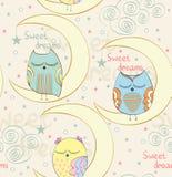 Sleeping owl Stock Images