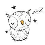 Sleeping Owl Stock Photo