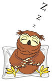 Sleeping owl and sift object Royalty Free Stock Images