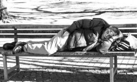 Sleeping on a park bench royalty free stock photo