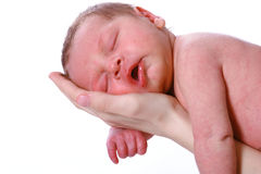 Sleeping Peacefully Stock Images