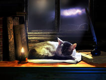Sleeping peacefully. Cat sleeping on a shelve, close to several books,a candle, and a nib with ink, under a window enlightened by the moon over stormy clouds Stock Photo