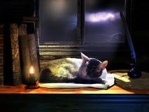 Sleeping peacefully Stock Photo