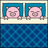 Sleeping Pig Couple Stock Images