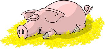 Sleeping Piglet. This illustration that I created depicts a piglet sleeping in straw Stock Photos