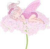 Sleeping Pixy Fairy. Illustration of cute sleeping Pixy Fairy Royalty Free Stock Photography