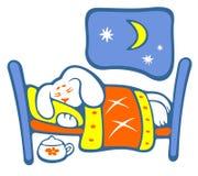 Sleeping puppy Stock Image
