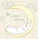 Sleeping rabbit Stock Images